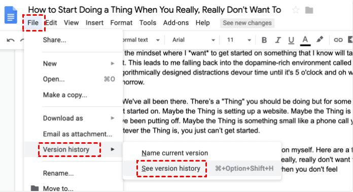 Google Doc See Version History
